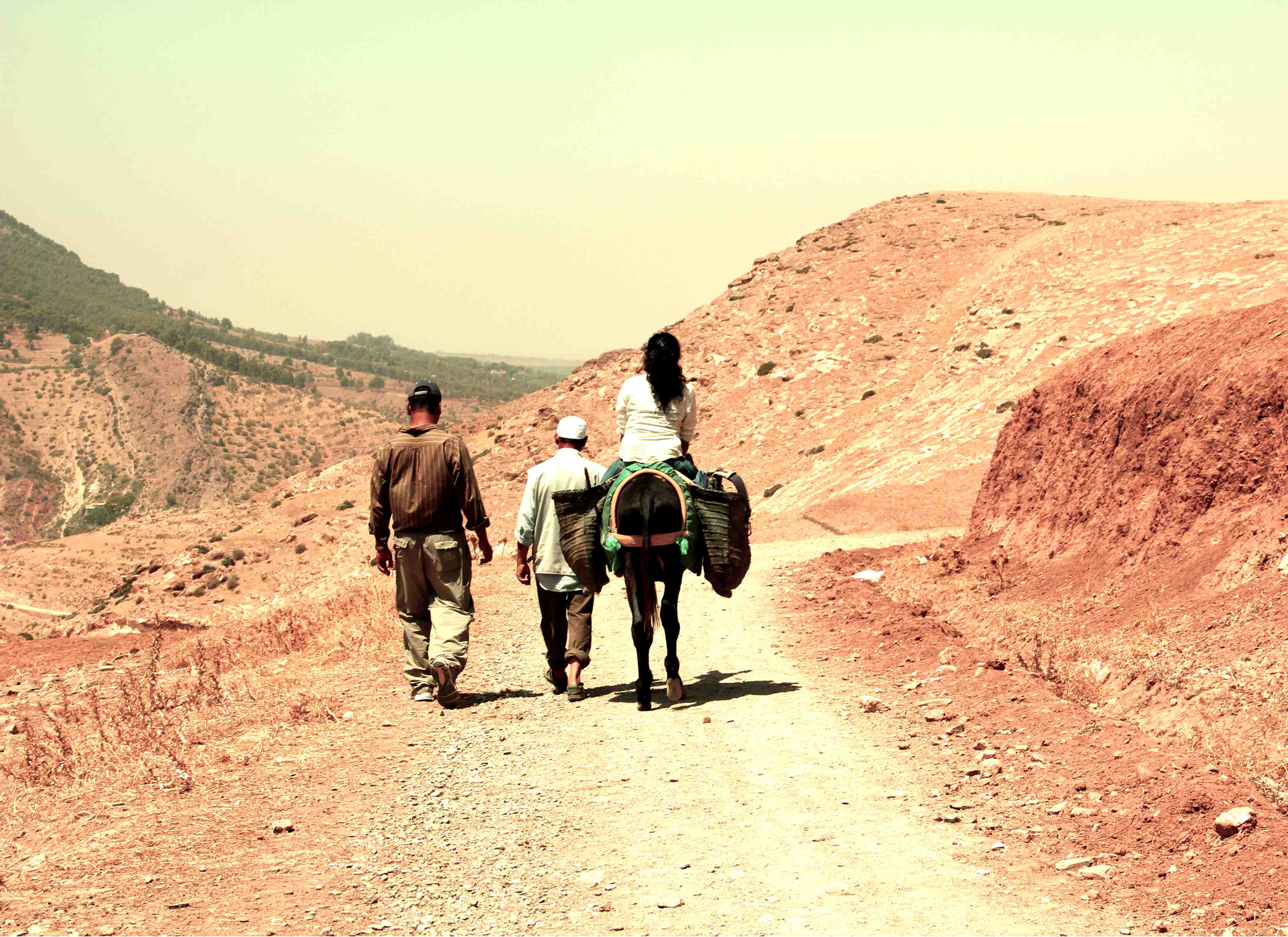 Hiking – Er, Donkey-Riding – Through Morocco's Atlas Mountains